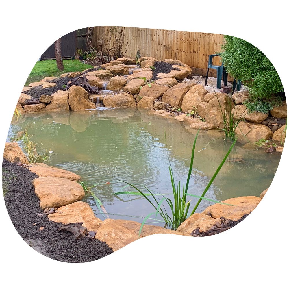 A professionally crafted natural pond