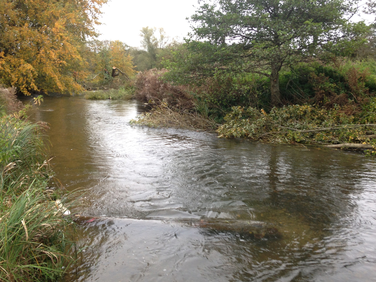 River habitat enhancement