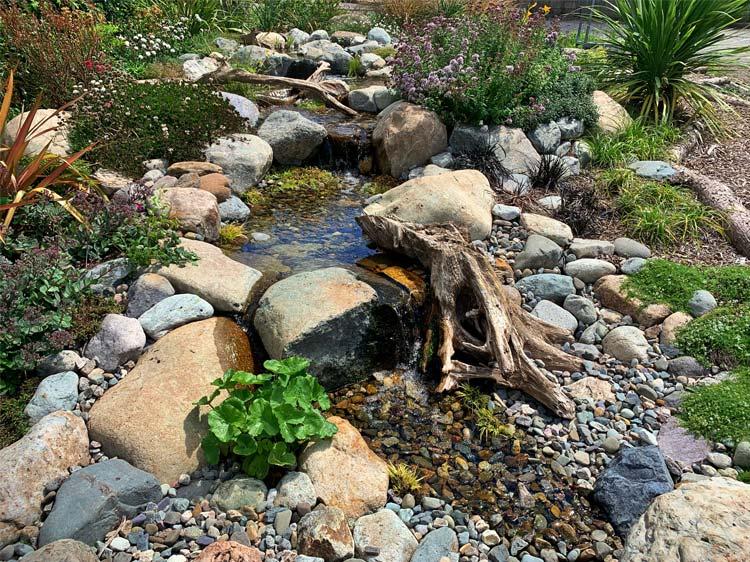 Kelways Plants Project Showcase